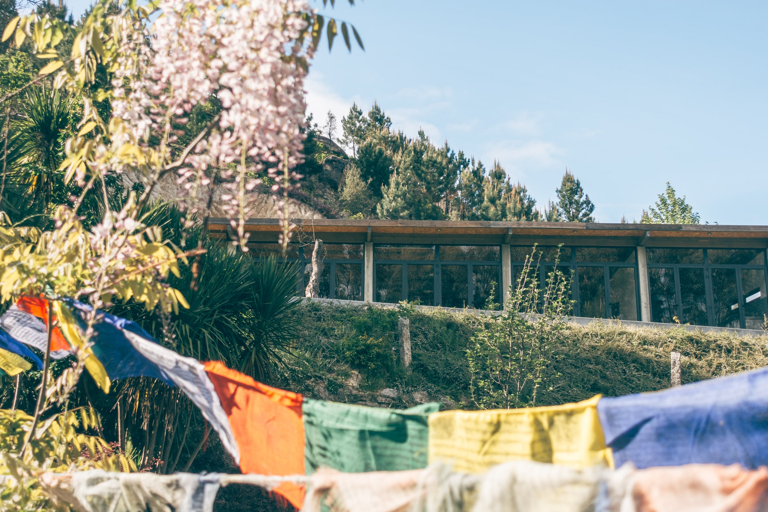 Der Yogaraum des D'Alijo Yoga Retreat Centers