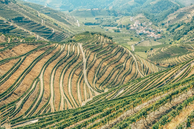 Landschaftliche Vielfalt - von Weinbergen bis Sandstrände